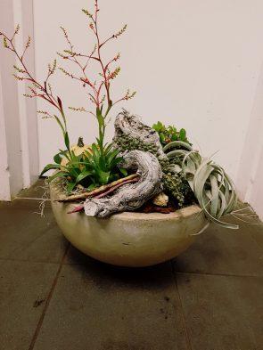 Planten Twello