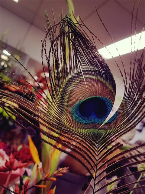 Pauwenveer bloemstuk